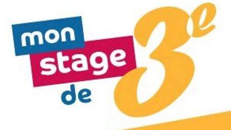 stage3e.jpeg